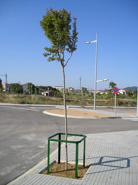 protector arbres city